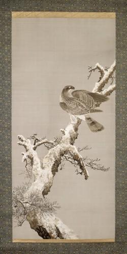 Textile hawk