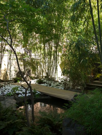 pic bamboo