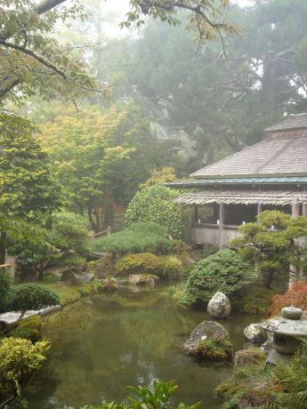 pic1 tea garden